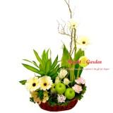 Floral_Arrangement_7